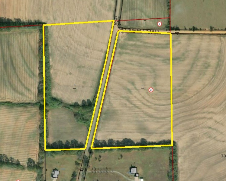 33 ACRES FOR SALE SLOCOMB, AL