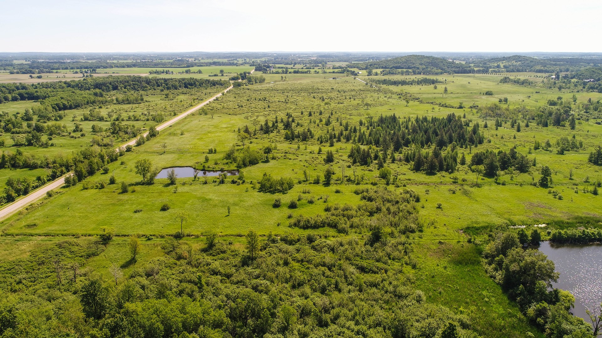 Hunting Land for Sale in Waupaca County WI