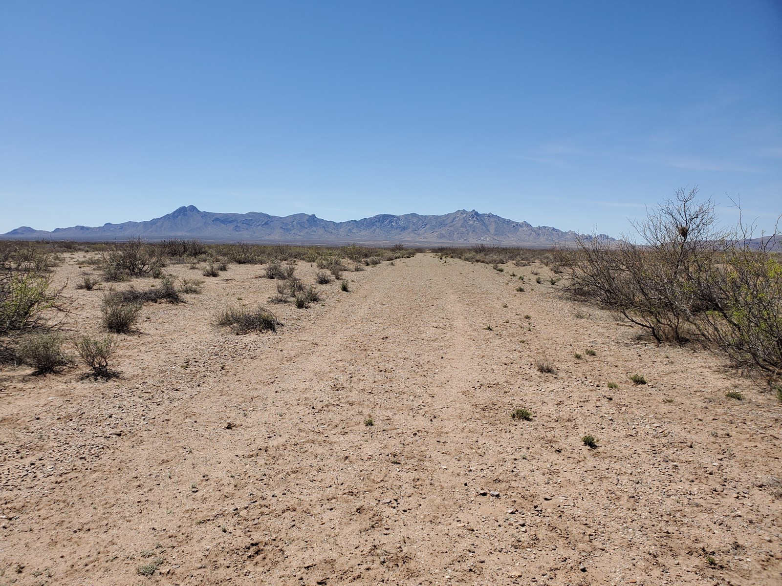 Land for Sal in Deming NM