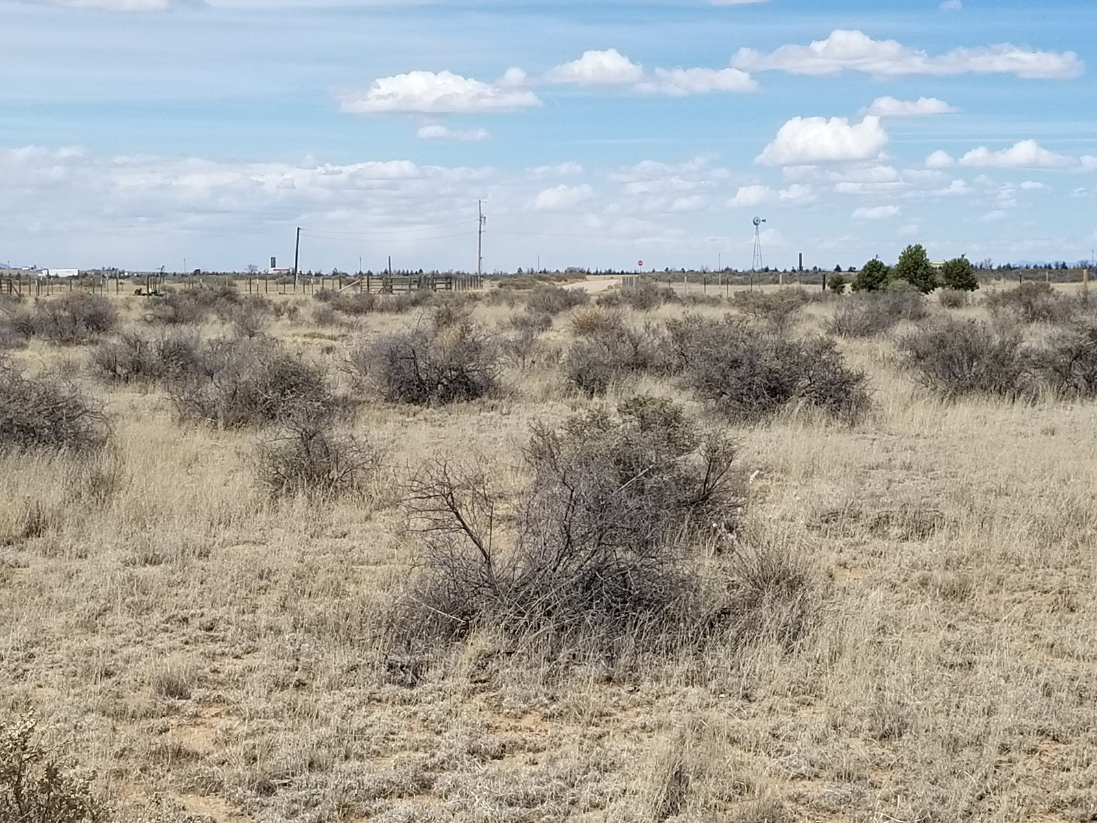 NM Residential Lot For Sale Torrance County Horses