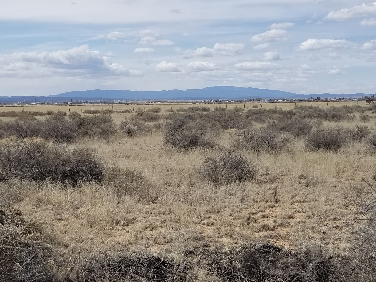 NM Torrance County Lot For Sale Horses Moriarty I-40