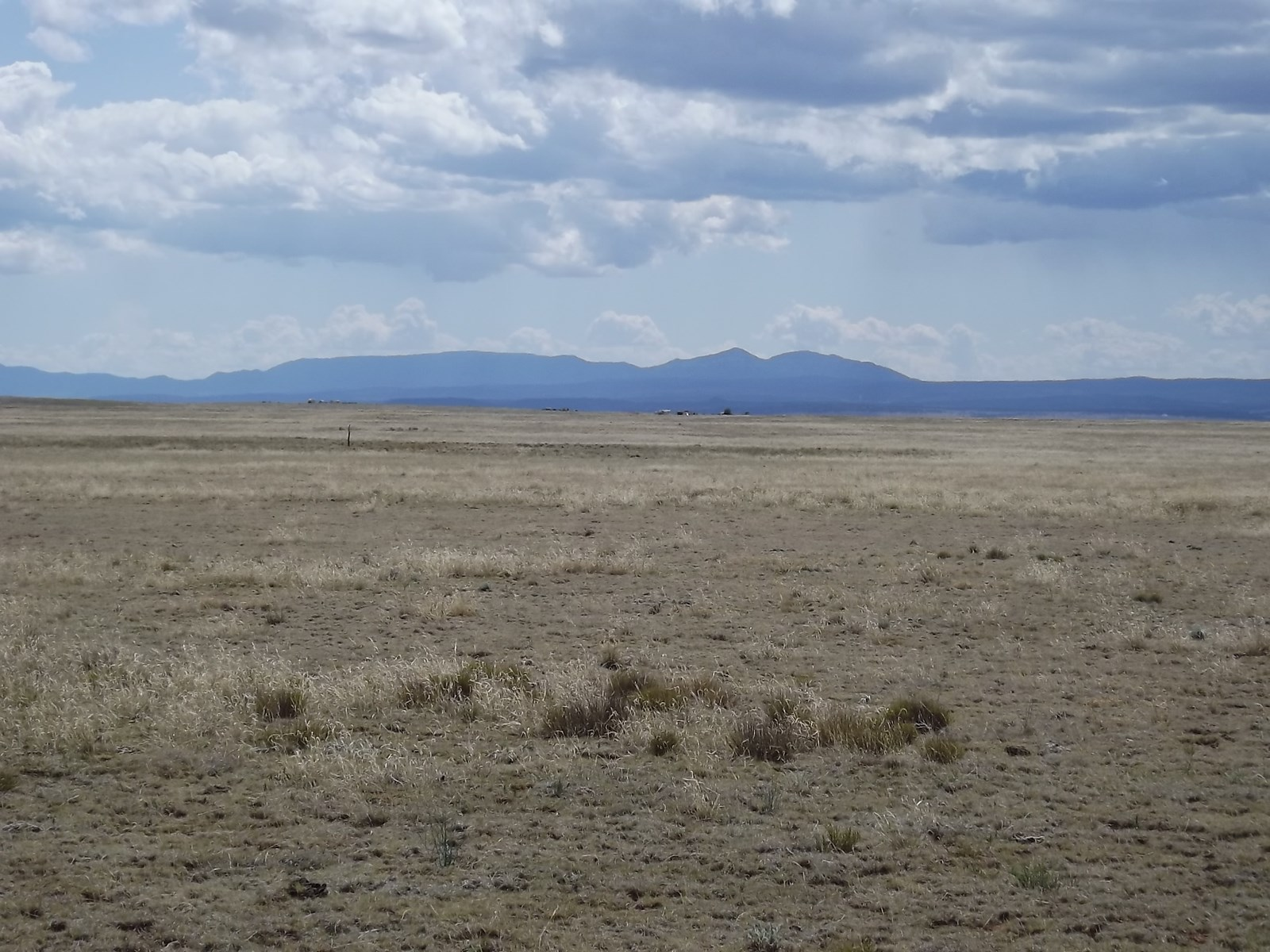 1,040 Acres Pasture Grassland For Sale Near Moriarty NM