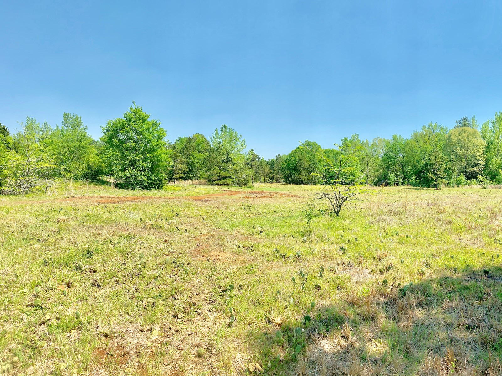 Recreational Hunting Land for Sale Near Lake Palestine Texas