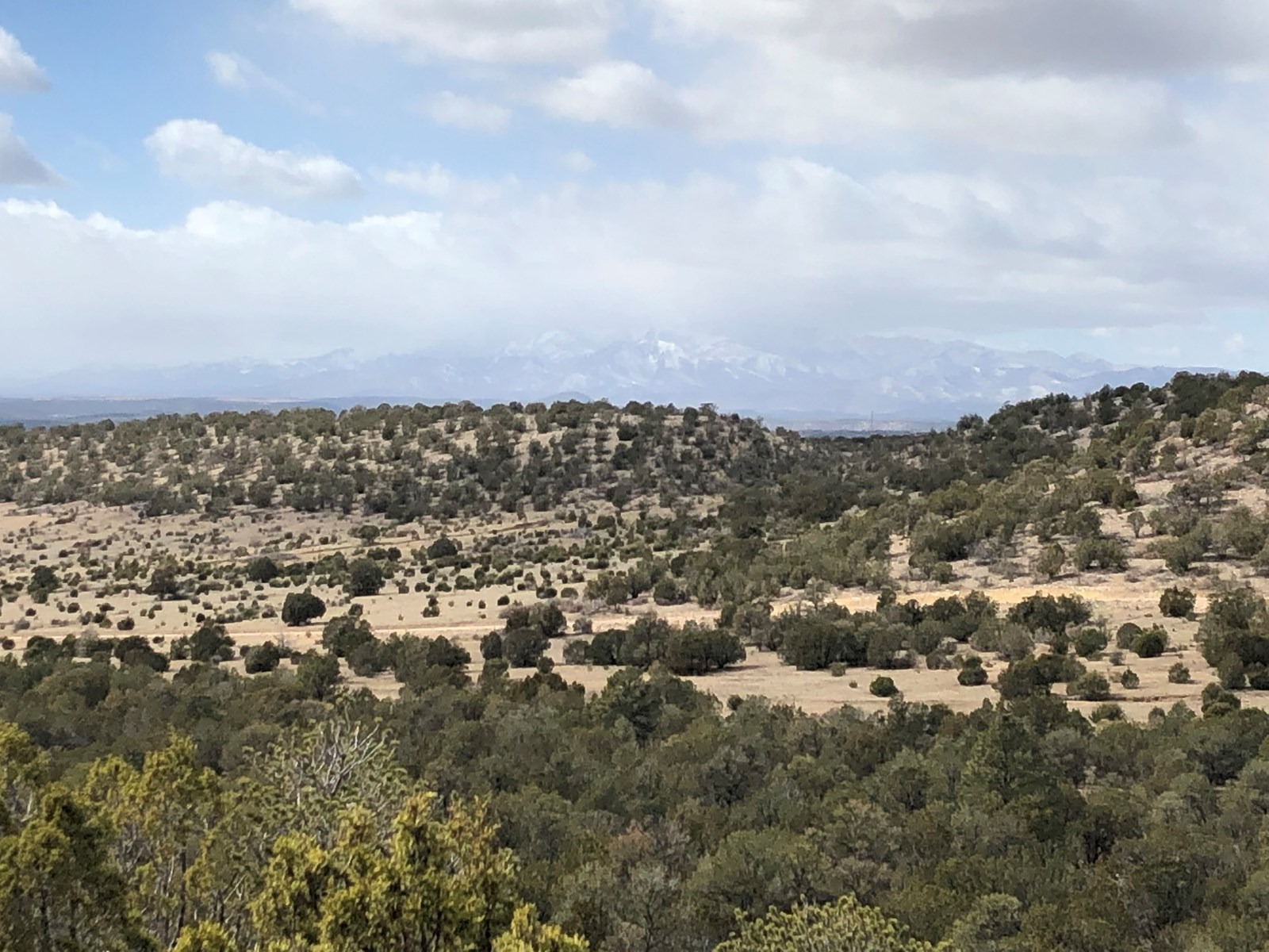 Beautiful 80 AC of Recreation/Ranch For Sale in Capitan, NM