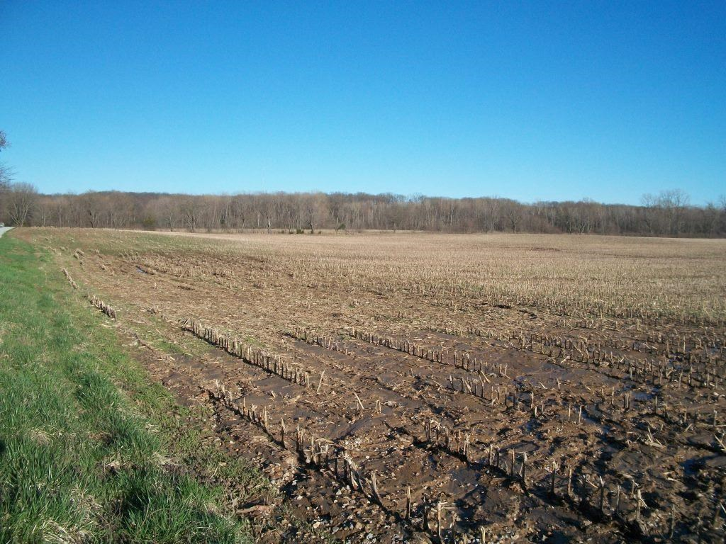 Highly Tillable Row Crop Farm in Clark County, MO