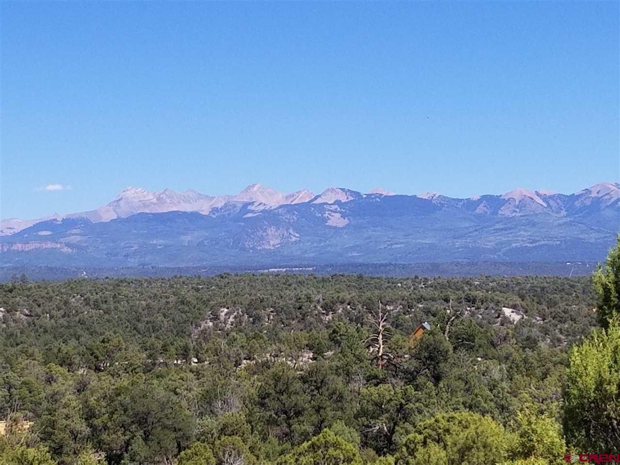 Land For Sale near Mancos Colorado!