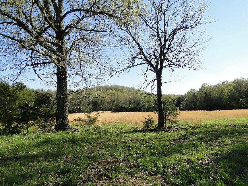 LARGE ACREAGE PROPERTY NORTH OF BATESVILLE