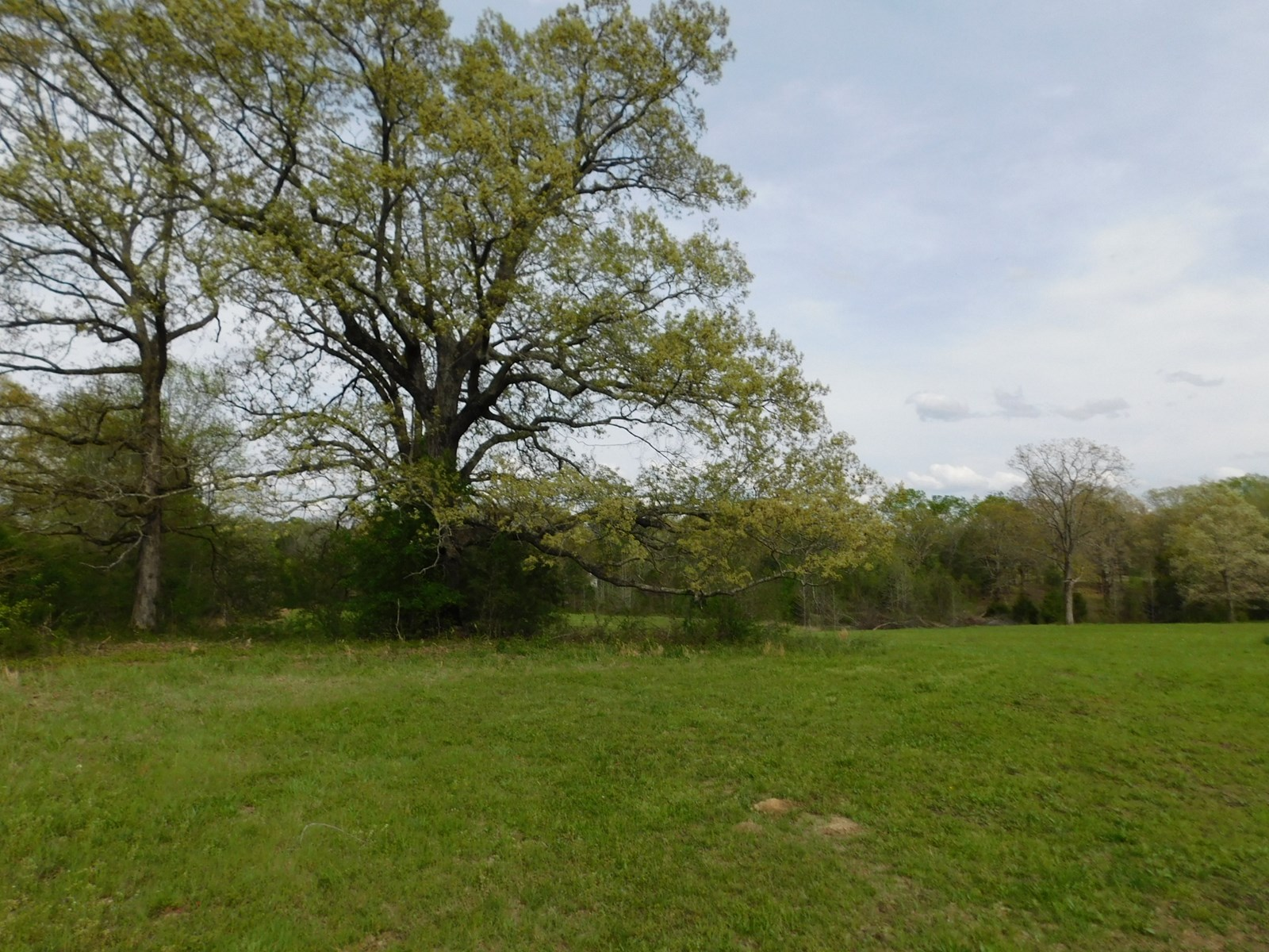LAND FOR SALE IN TN WITH PASTURE, BARN, POND, FENCING