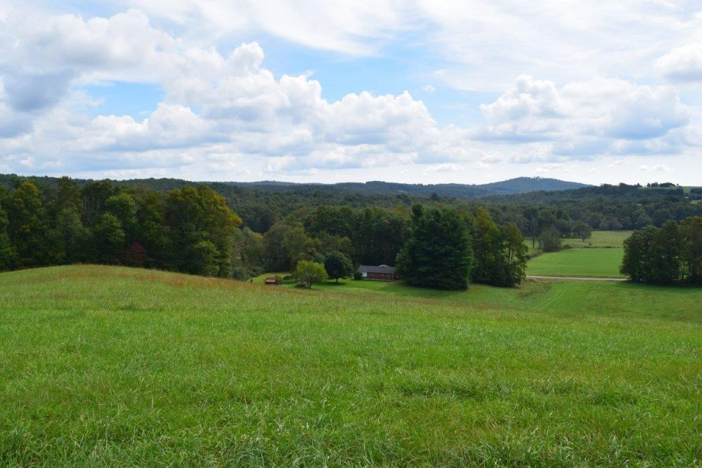 Farm Land for Sale in Meadows of Dan VA
