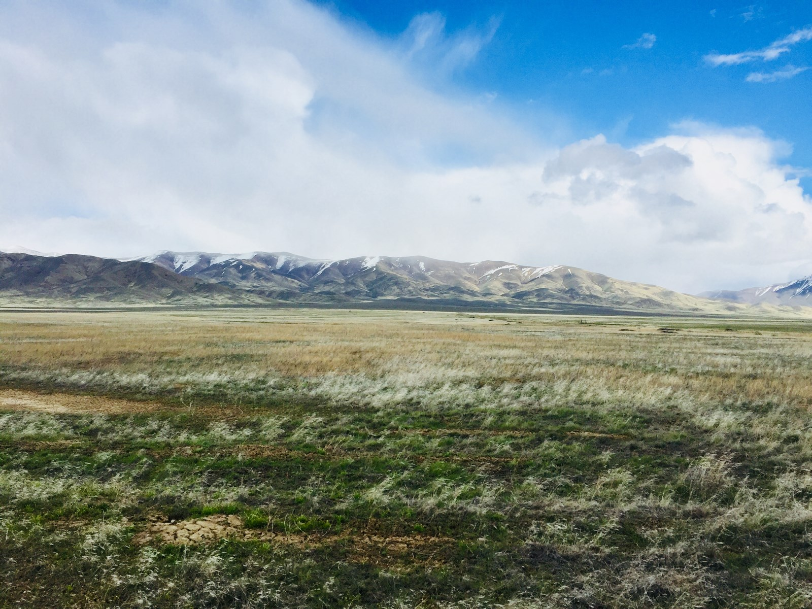 Land for sale in Pershing county close to Winnemucca
