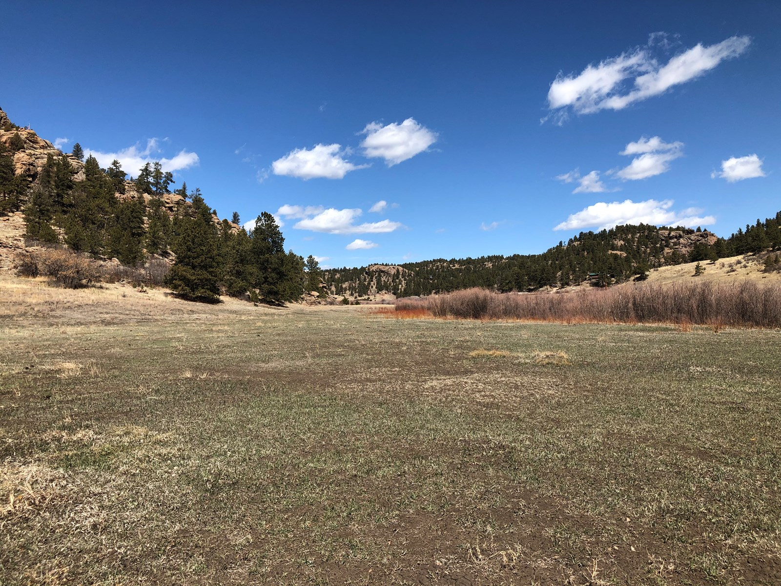 5.73 Acres of Vacant Land with Stream in Florissant, CO