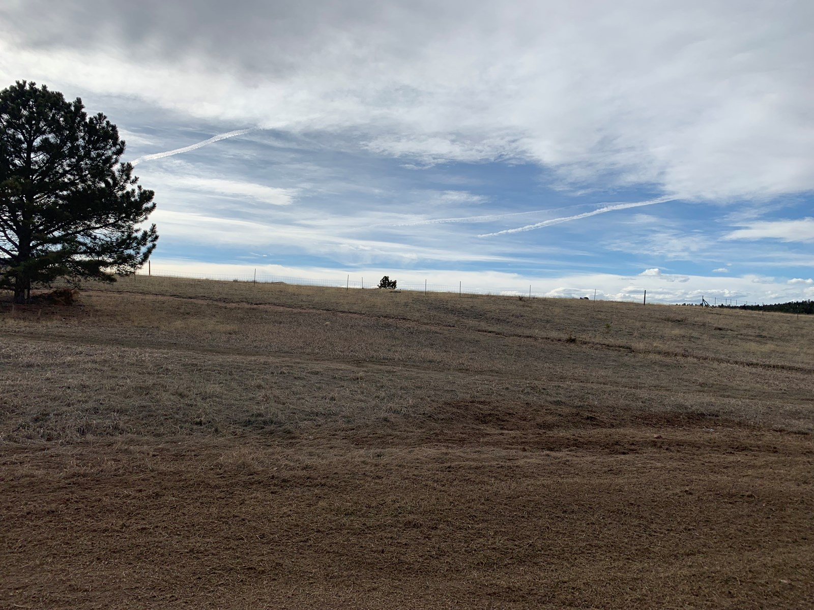 Corner Lot of .37 acres in Sherwood Forest, Divide CO