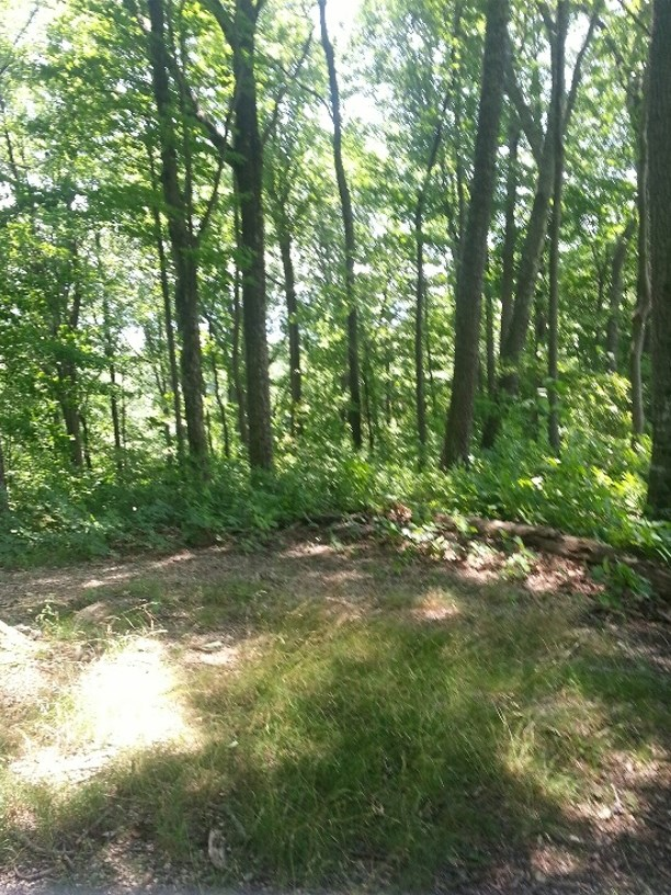 15 Acres with Beautiful Views