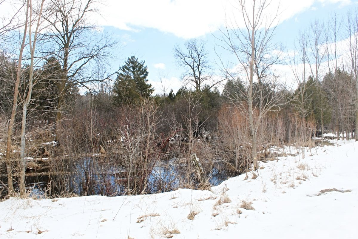 Manitowoc County Buildable River Frontage with Hunting Oppor