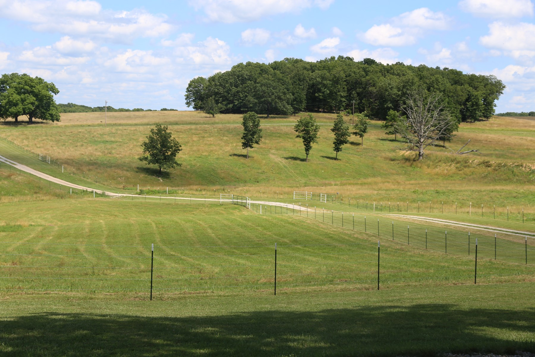 Beautiful farm on 50 acres in Ozark County
