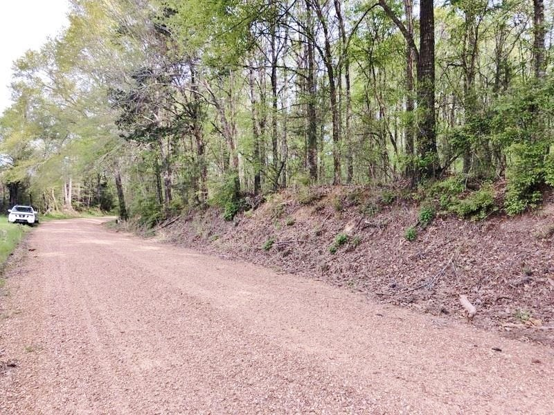 5 +/- Acres Land for Sale Roxie, Franklin County, MS
