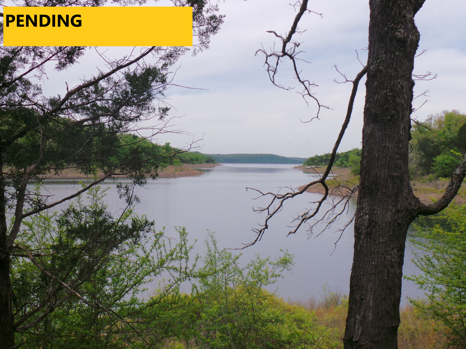 LAKE FRONT PROPERTY FOR SALE ON BULL SHOALS LAKE