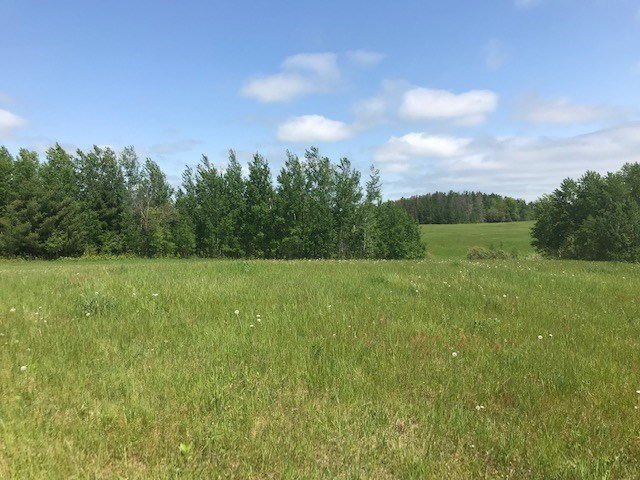 Small Acreage For Sale with Lake View of Pine Lake Finlayson