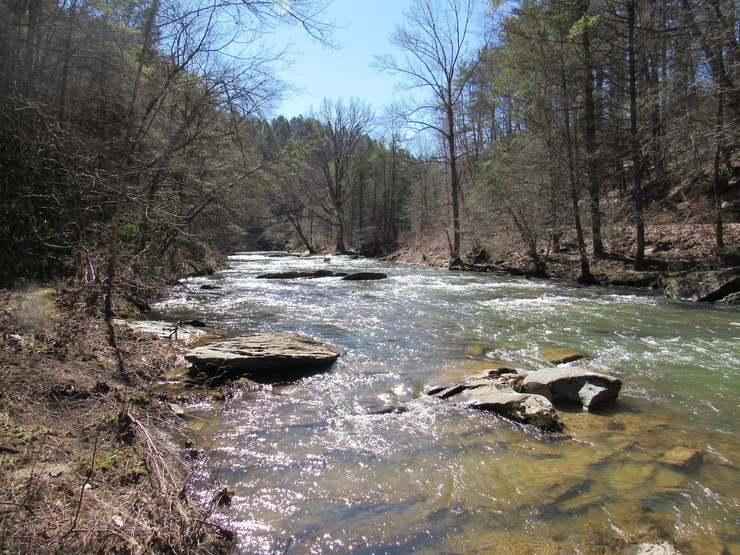 Beautiful Recreational Property for Sale in Galax VA!