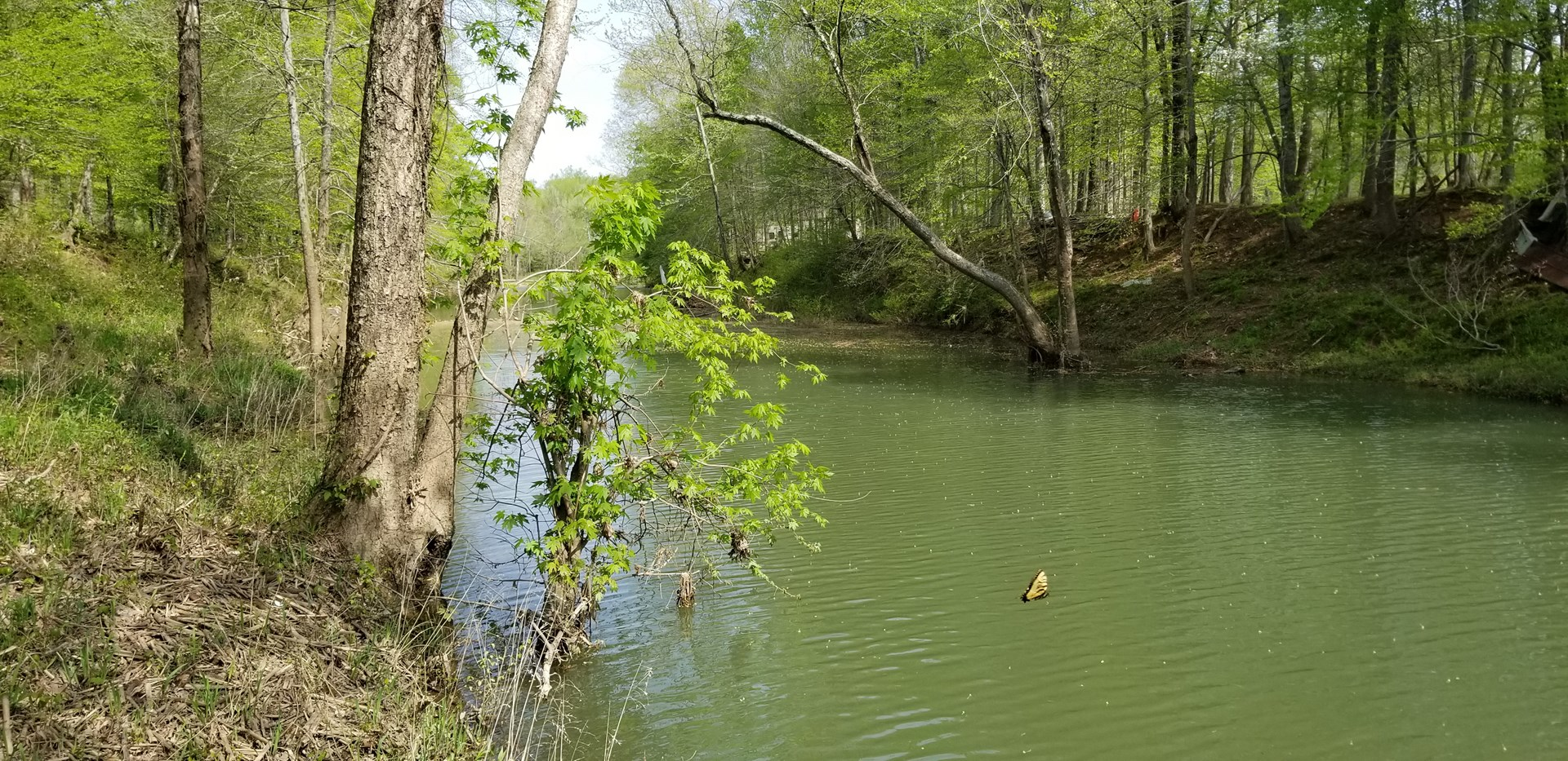 One Acre Lot on Buffalo River Perry County TN