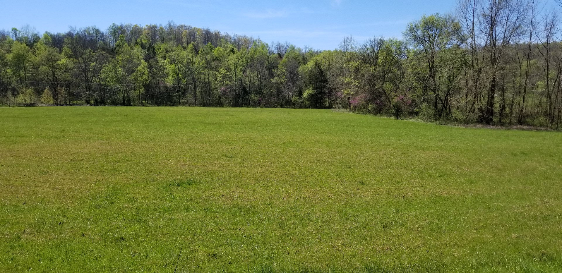 5 Acres Vacant Land in Perry County, TN