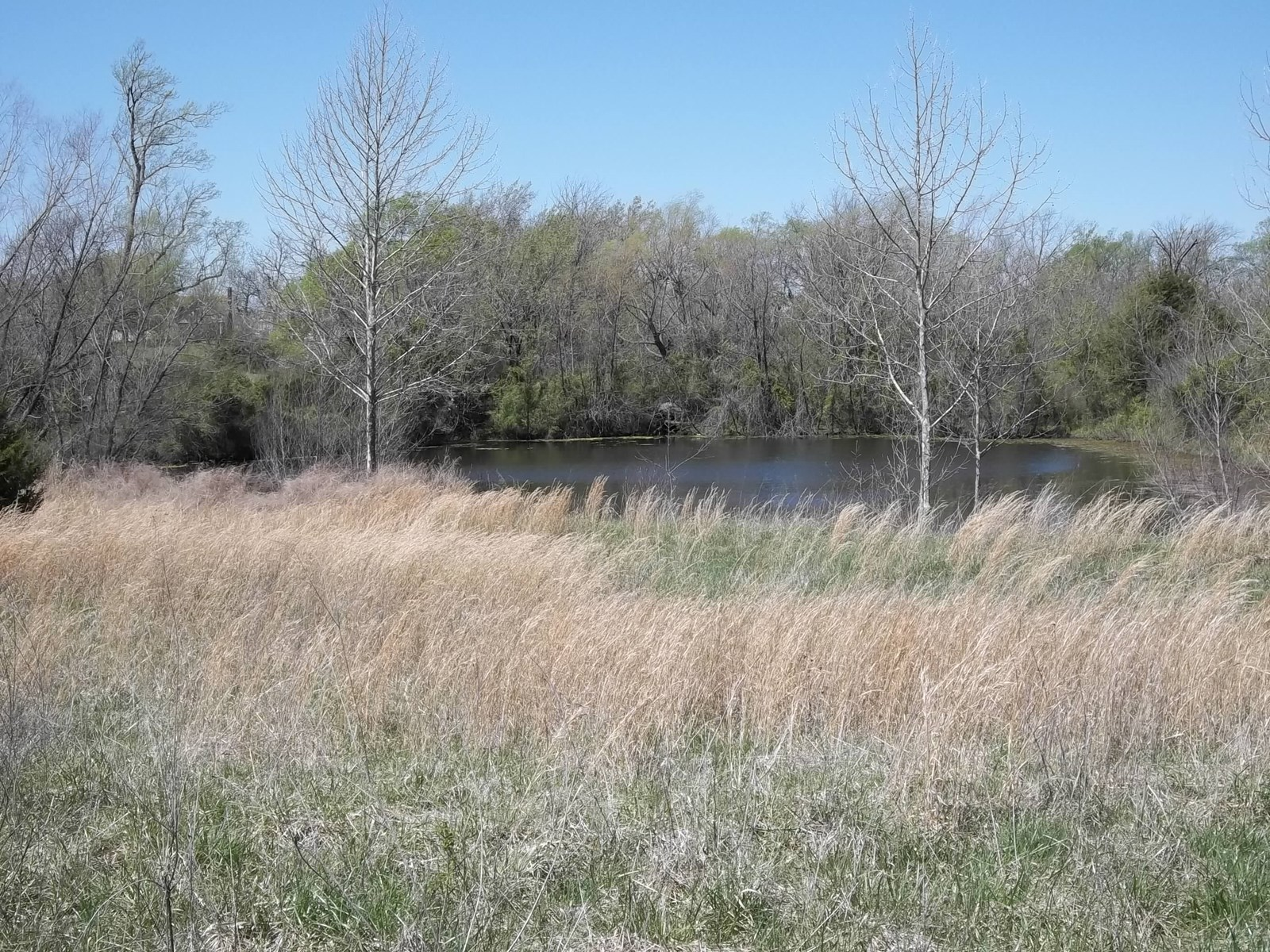 Land for Sale in Neosho County Kansas