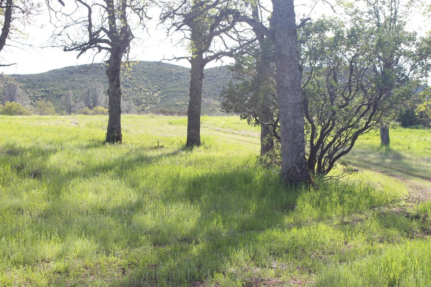 Northern CA Recreational Ranch with 80 Acres For Sale