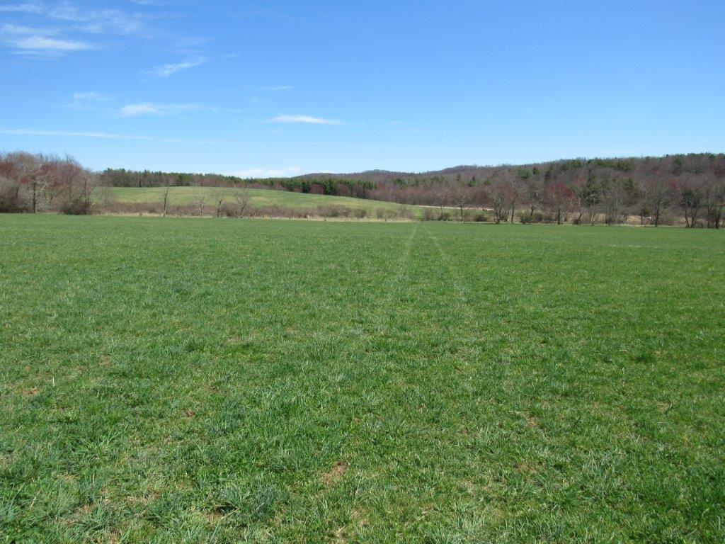 Over 200 Acres of Farm Land in Floyd VA