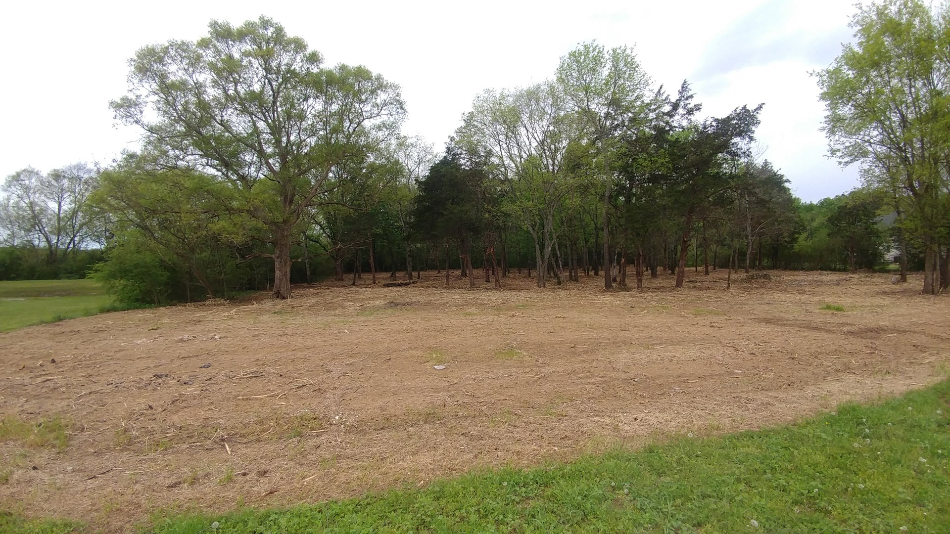 Lot For Sale Morgan County AL