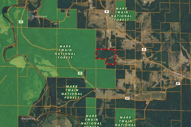 Wooded Acreage that JOINS 1000s of Acres of National Forest
