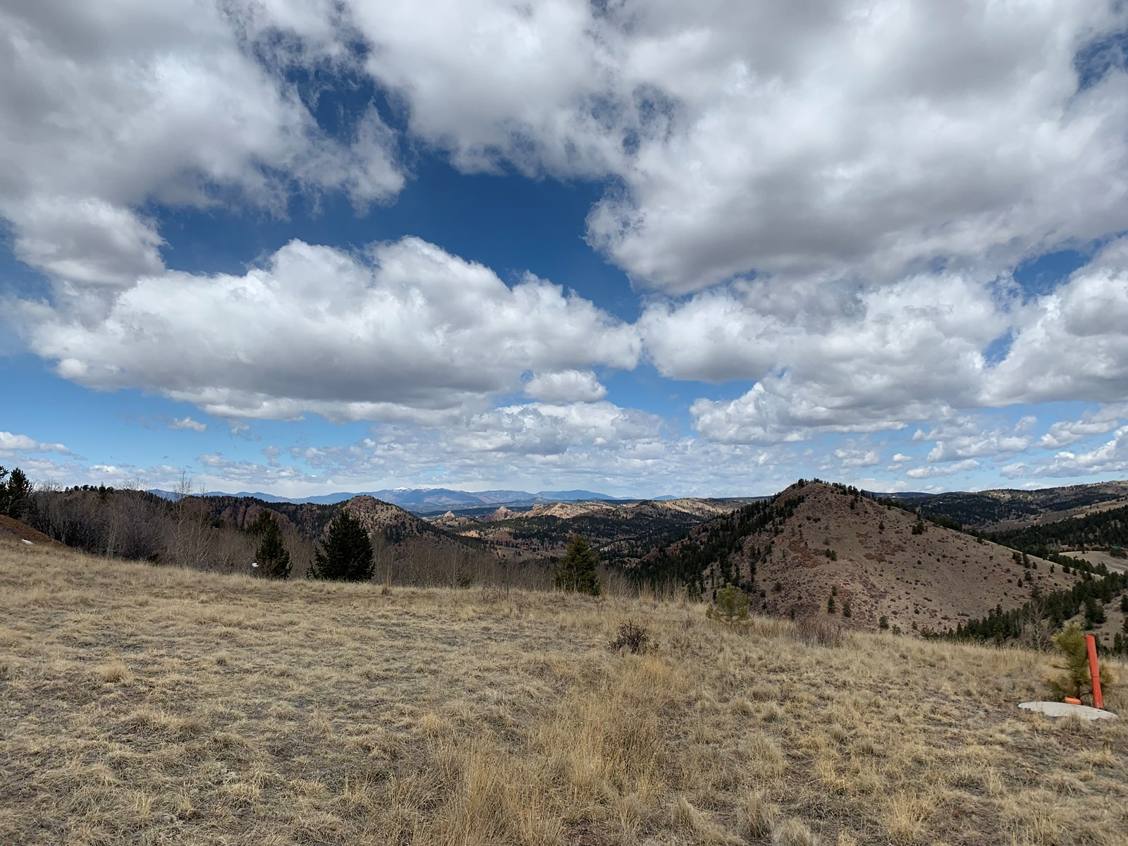 9 acres of Vacant Land in Cripple Creek