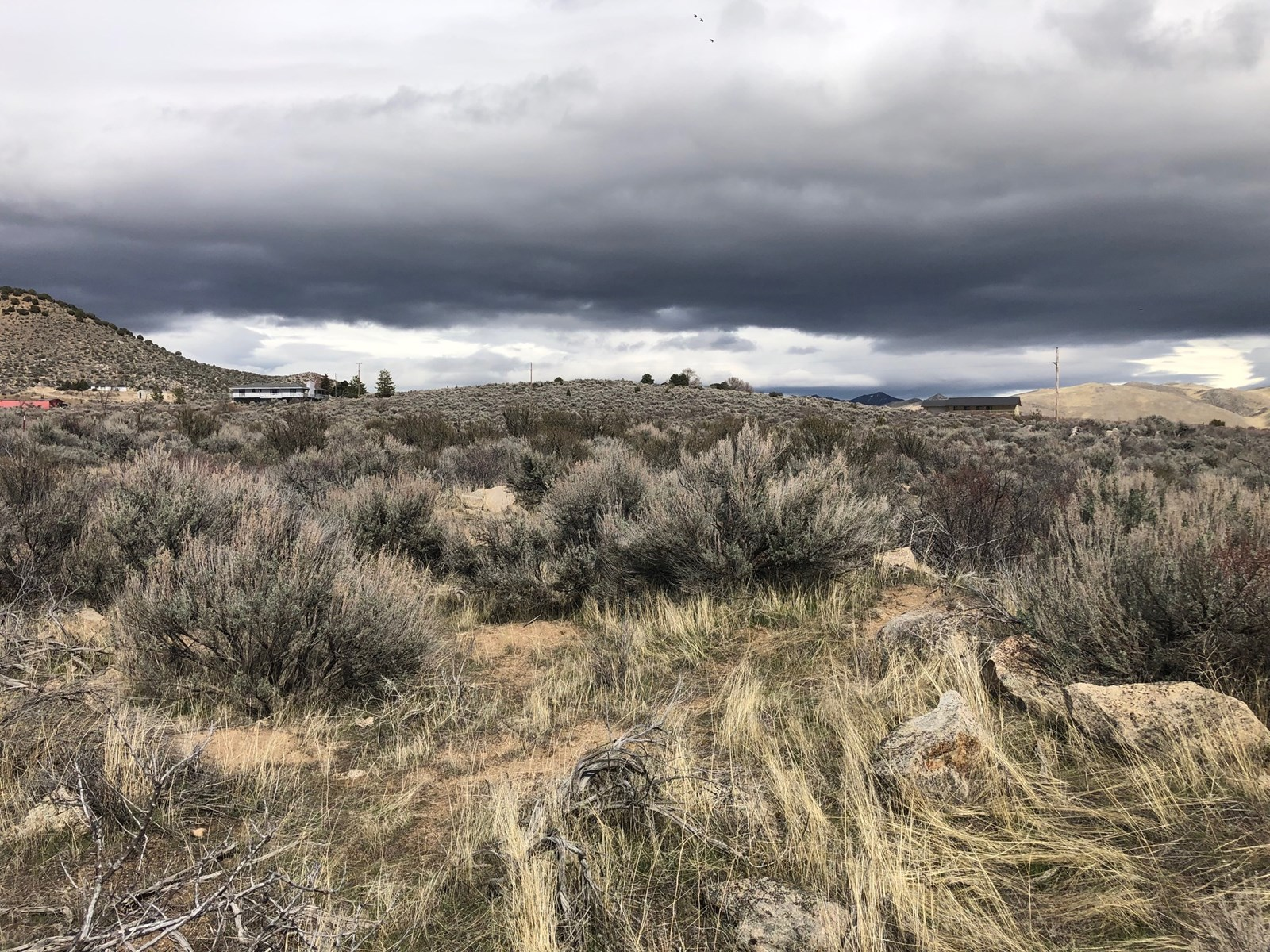 Land for sale in North Reno near California border