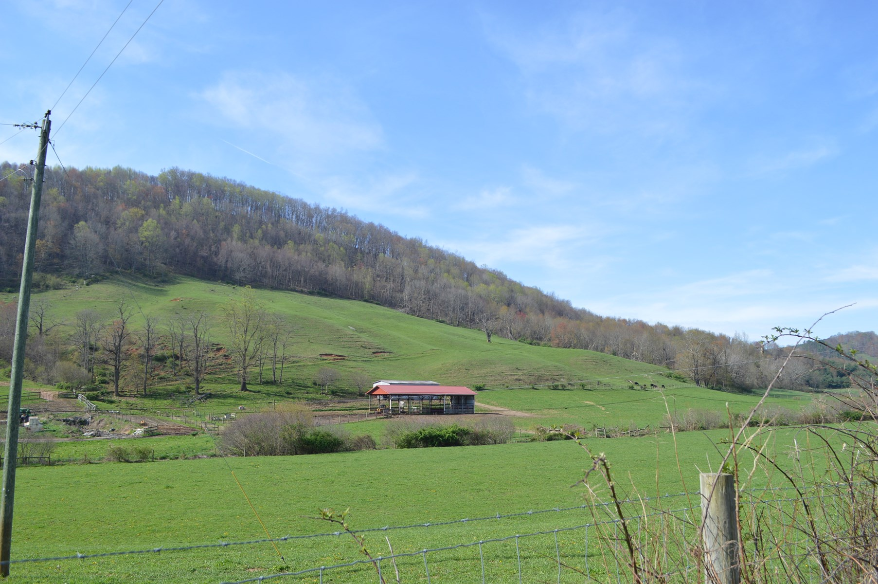 Extremely nice farm 38.49 Acres +/- in Alleghany County NC