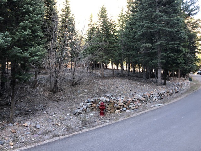 Slightly Sloped Lot in Town For Sale Ouray Colorado