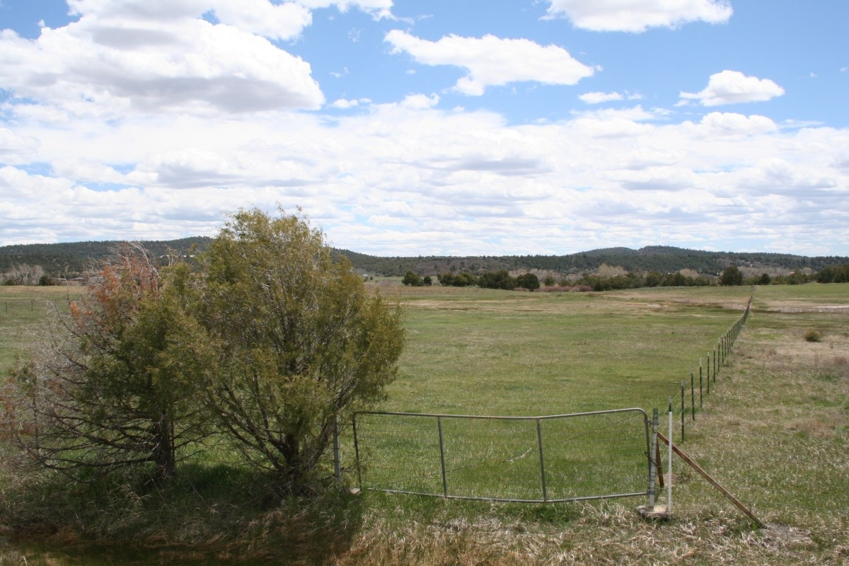 Irrigated land for sale south pof Chama NM