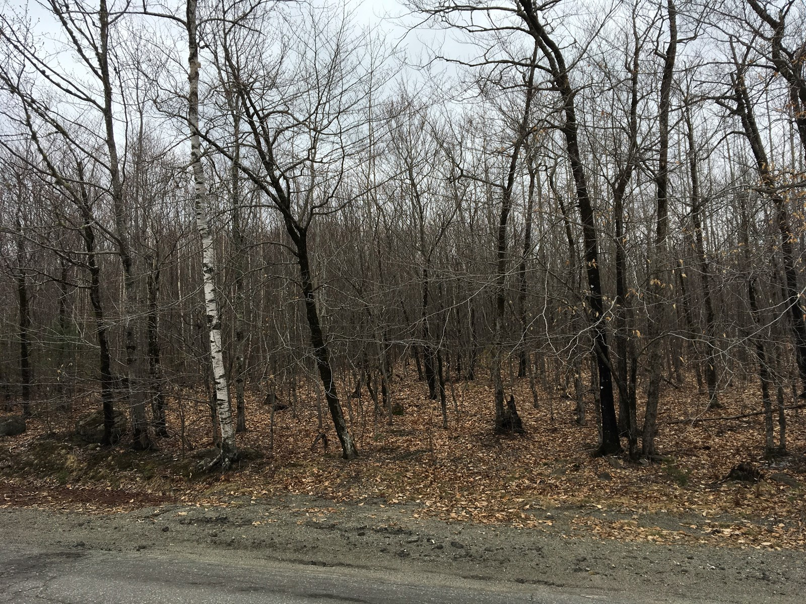 Land for Sale in Lowell, Maine