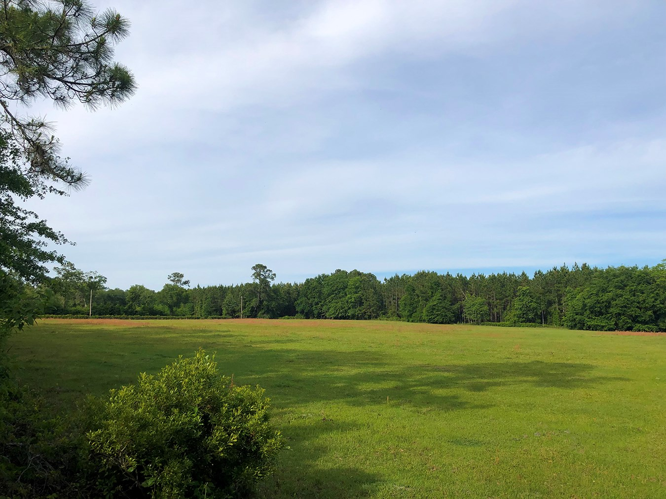 10 BEAUTIFUL ACRES IN LAKE CITY, FLORIDA