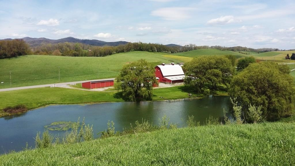 Pond and 16 acres in Smyth County, VA