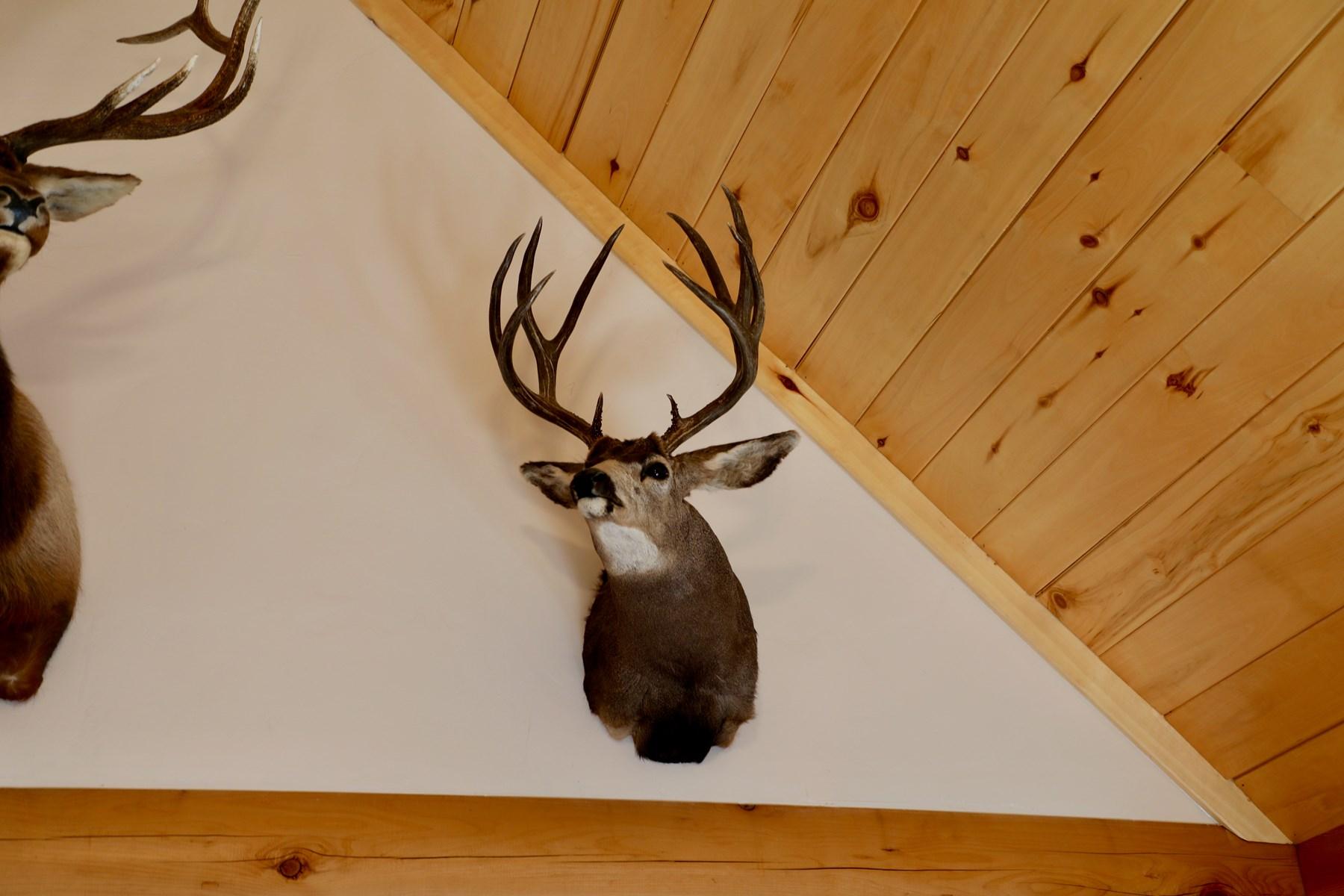 Deer and elk harvested on property