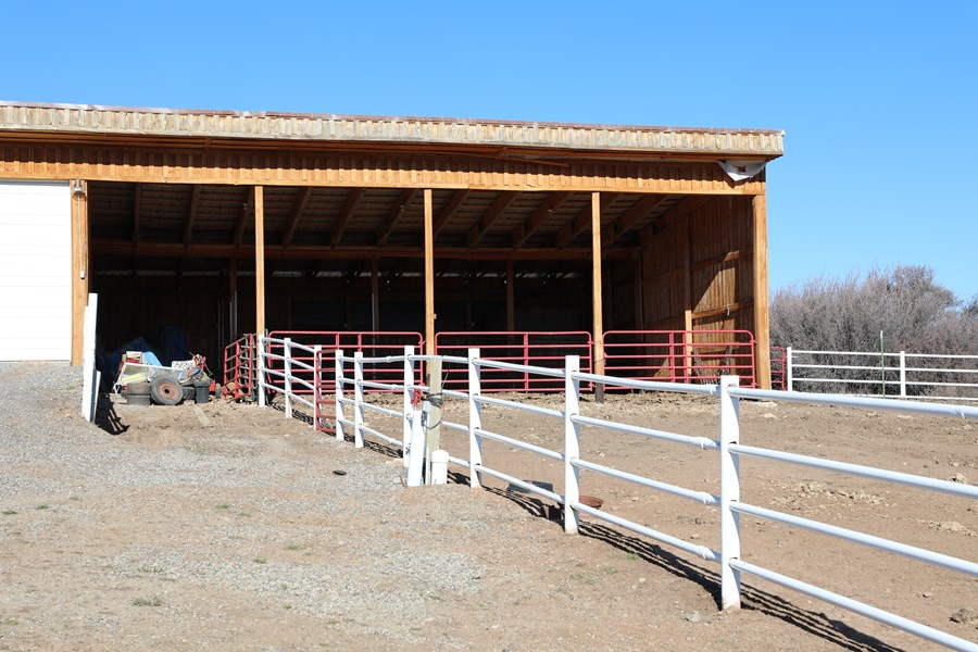 4-run horse stalls on equestrian property
