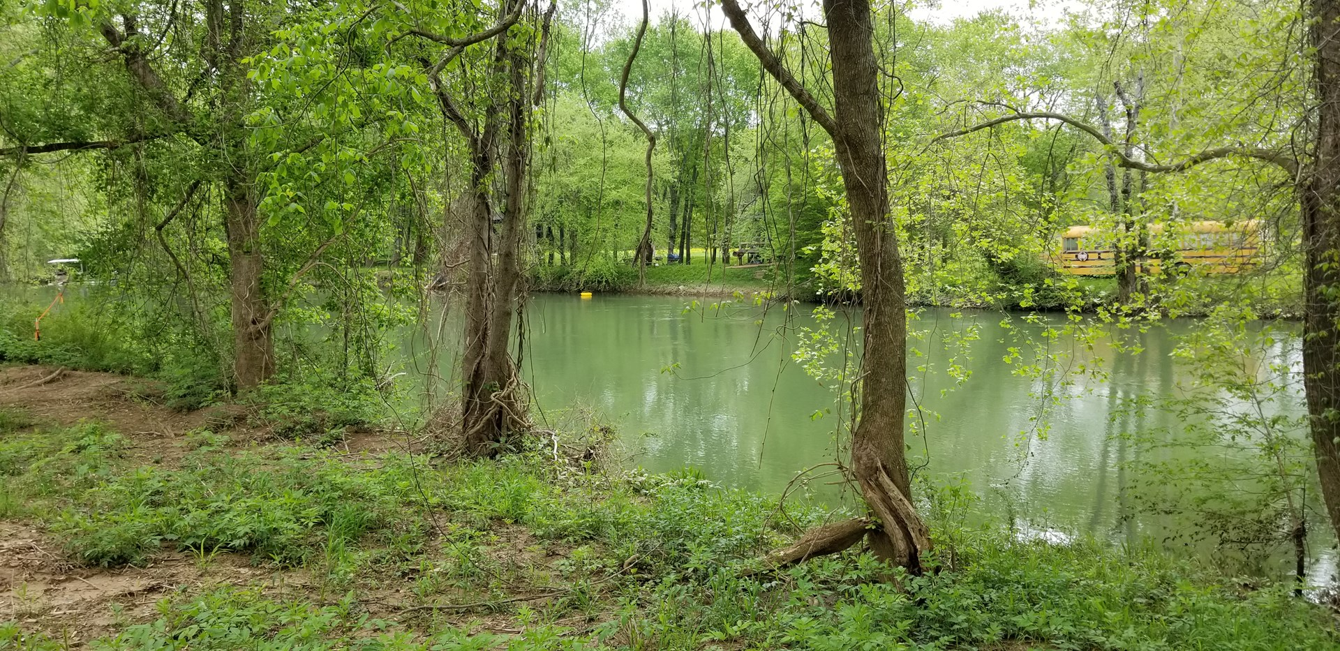 Buffalo Riverfront Lots for Sale in Linden, TN!!