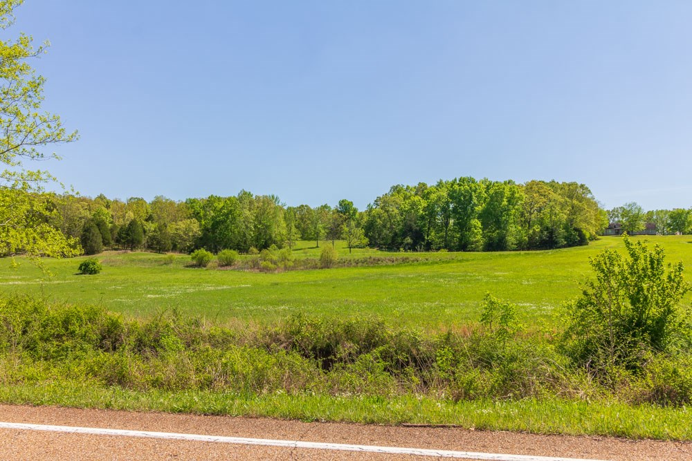 Over 11 Acres for Sale;  Hwy 57 near Michie, TN