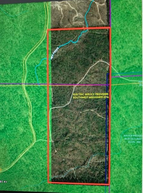Hunting Land Joins Homochitto National Forest Crosby MS