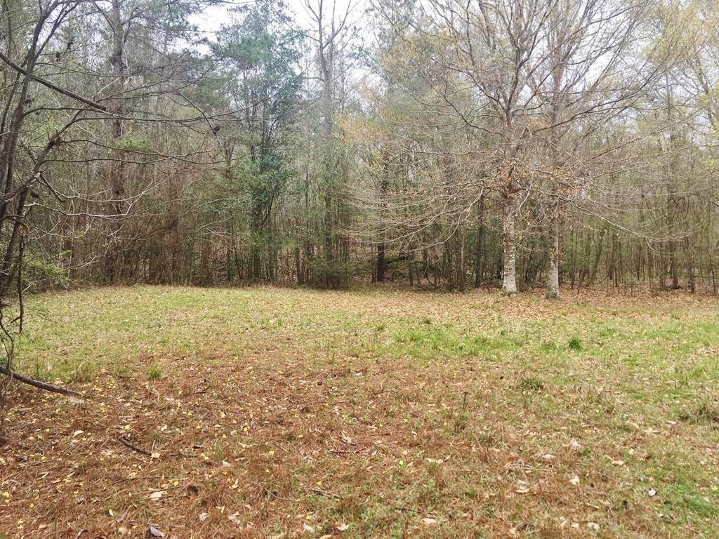 Hunting Camp & Acreage Great Timber Franklin County, MS