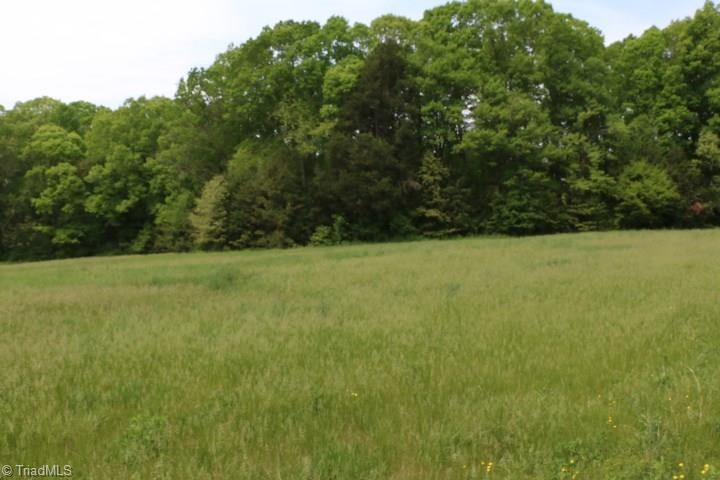 Land for sale in Tobaccoville NC