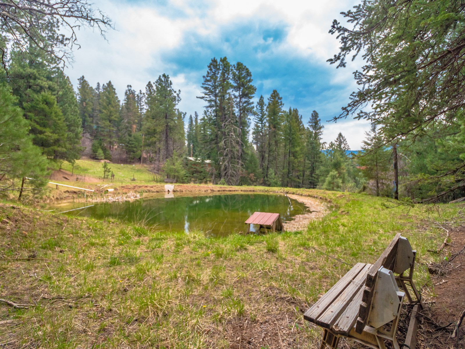Cabin and Pond in Waterfall Subdivision in Cloudcroft NM