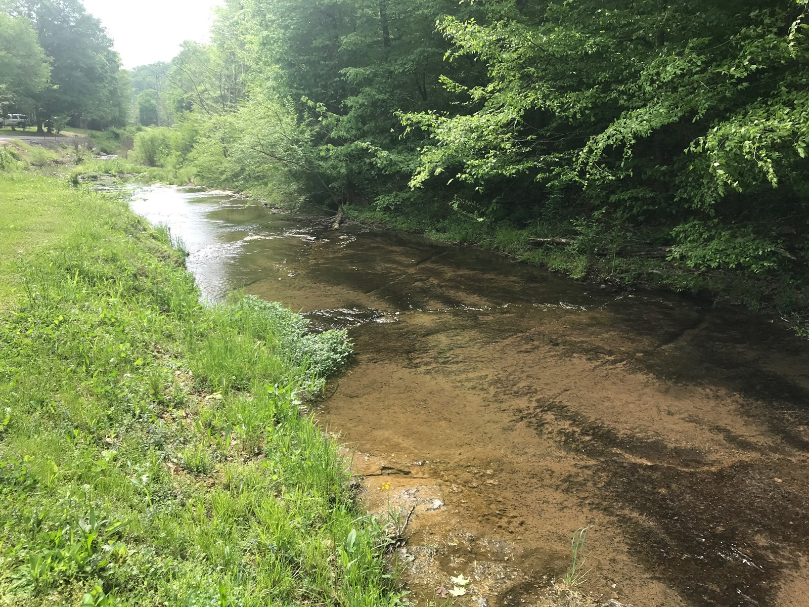 Land For Sale in Leipers Fork