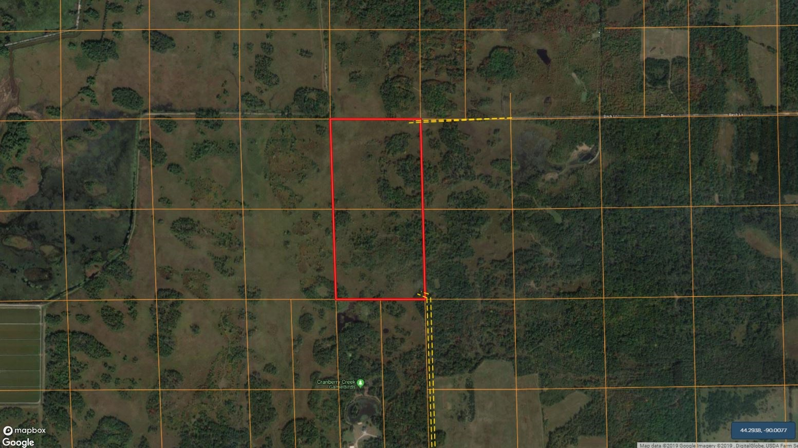 80 Acres of Wood County Hunting Land