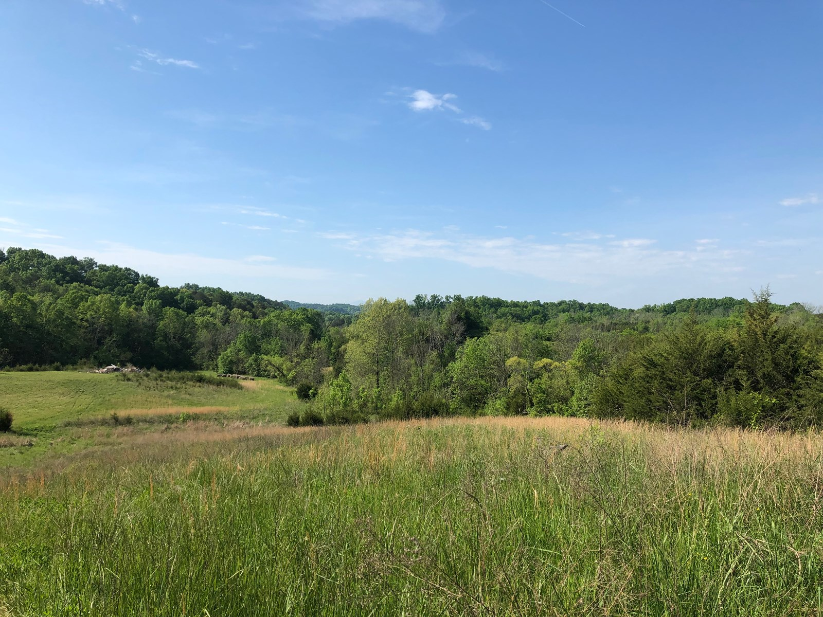 East Tennessee Unrestricted Land for Sale in Greene County
