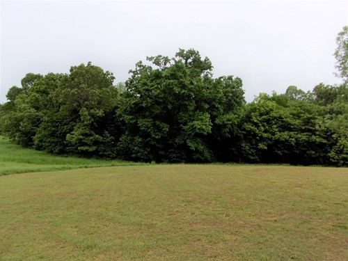 Arkansas land for sale, Hunting Land in AR, Deer and Turkey